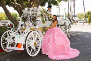 Quinc Horse Carriages