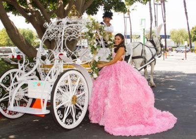 Quinc Horse Carriages