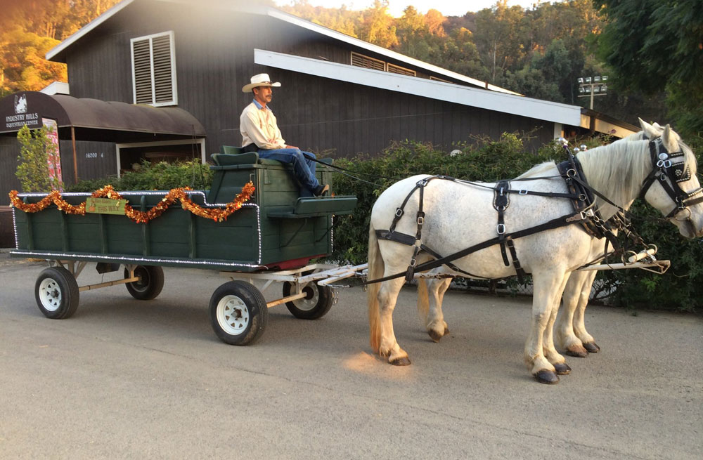 Hay Ride Horse Wagon