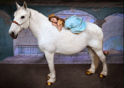 Horse Party rentals
