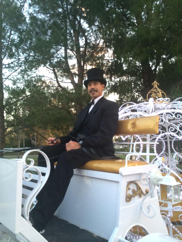 Horse Carriage Coachman