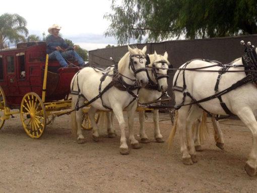 Henderson Stagecoach
