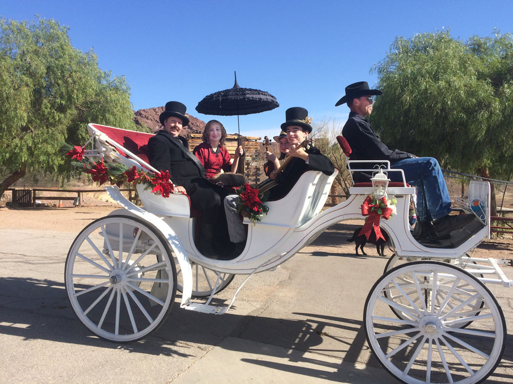 Holiday Horse Carriages