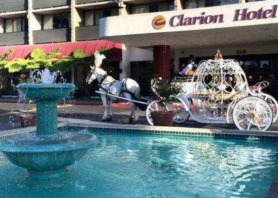 hotel wedding horse carriage