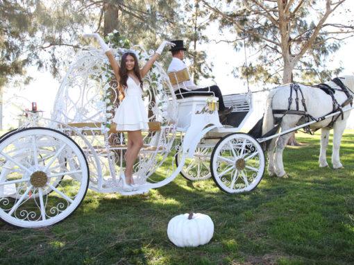 Cinderella Carriages