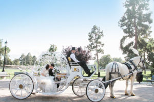 wedding princess carriage